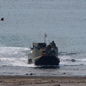 陸上自衛隊 水陸両用車 AAV7