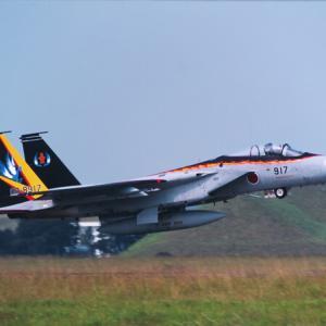 """埴輪イーグル FINAL SPECIAL """"F-15J 02-8917"""""""