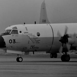 P-3C パーソナルマーク ~第1航空隊~