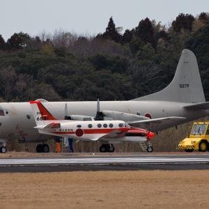 海上自衛隊 第202教育航空隊 TC-90