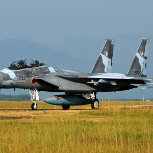 """JASDF AGGRESSOR F-15DJ""""92-8095"""""""