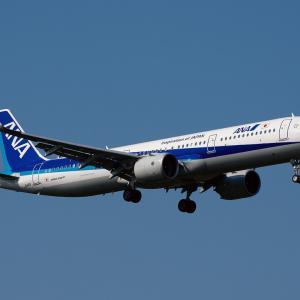 ANA AIRBUS A321neo ~鹿児島空港にて~