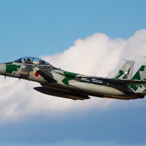 """航空自衛隊 飛行教導群 F-15DJ """"12-8074"""""""