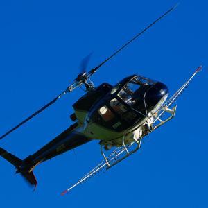 早朝の航空祭 AS350B Ecureuil ~JA9370~