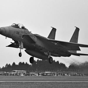 航空自衛隊 第202飛行隊 F-15DJ