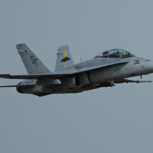 U.S.M.C F/A-18 VMFA(AW)242