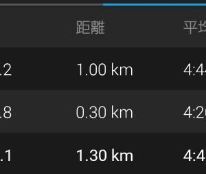 第14回湘南国際マラソン前日