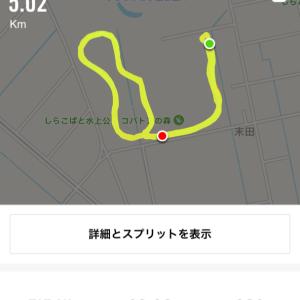 2019/09/16 Run