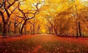 秋、冷酷になる