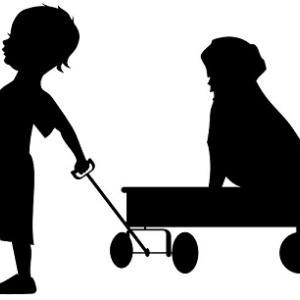 愛犬を守るペットの同行避難についてご紹介!もしもの時のために準備をしておきましょう!