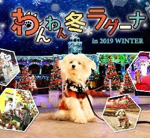 ラグナシア「わんわん冬ラグーナ」イベント開催!愛犬と一緒にテーマパークに行こう!