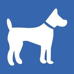 老犬介護に必須!床ずれ(褥瘡)を予防する方法は?