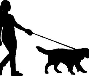 愛犬用「防災グッズ」の準備はできていますか?オススメ防災グッズ8選をご紹介!