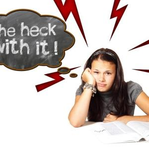 ヘタレの働き方: メンタル激弱でも仕事が楽しい人は、 何を知っているのか?