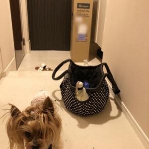 コムペット 犬用カート① 購入