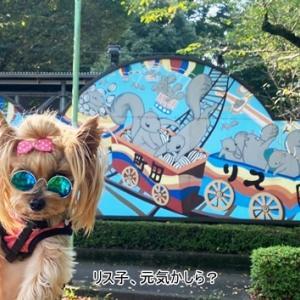 犬連れ 町田薬師池公園