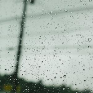 雨の日にはこれ!〜有意義な時間を過ごしたいあなたに〜