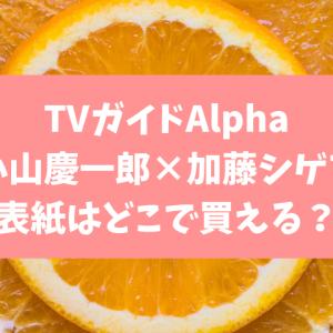 TVガイドAlpha EPISODE FF はどこで予約できる?在庫あり店舗をご紹介!