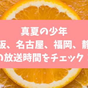 真夏の少年 名古屋・福岡・静岡・大阪の放送時間やチャンネルは?