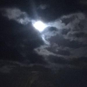 睦月十六夜、幻想的な光