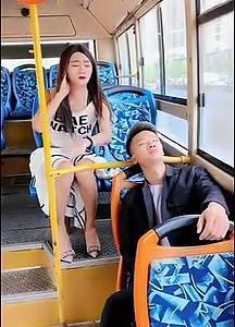【犬猫動物動画まとめ】Best Funny TikTok Videos #1308 - TikTok meme compilation - TikTok Videos 2020