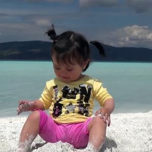 【犬猫動物動画まとめ】Salda Gölü'ne ziyaretçi akını