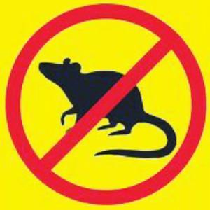 【犬猫動物動画まとめ】Mouse & Rat Ultrasonic Repellent