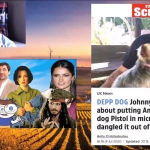【犬猫動物動画まとめ】Amber Heard and the Sun Accuse Johnny Depp of DOG Abuse!