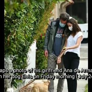 【犬猫動物動画まとめ】Ben Affleck Snaps Photos of Ana de Armas on Their Dog Walk