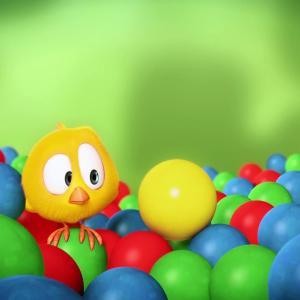 【犬猫動物動画まとめ】Where's Chicky_ Funny Chicky 2020 _ CHICKY _ Chicky Cartoon in English for Kids hen chicks