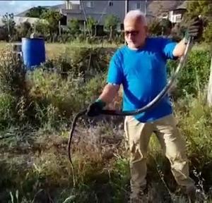 【犬猫動物動画まとめ】Balıkçı ağına takılan kara yılan kurtarıldı