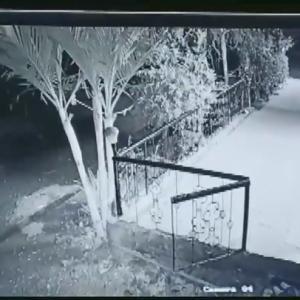 【犬猫動物動画まとめ】viral video: A leopard hunts a pet dog sleeping outside a house in Bhuse village of Nashik