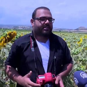 【犬猫動物動画まとめ】MERSİN - Çukurova'da sarıya boyanan ayçiçeği tarlaları doğal fotoğraf stüdyosu haline geldi