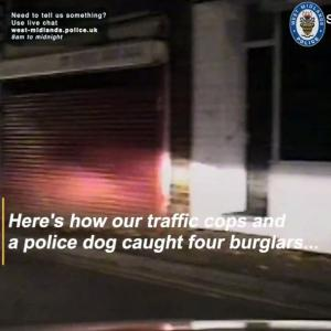 【犬猫動物動画まとめ】This Amazing Police Dog Is Able to Sniff Out and Locate Would-Be Thieves in the U.K.