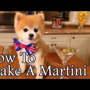 【犬猫動物動画まとめ】How To Make A Martini By Gentleman Norman