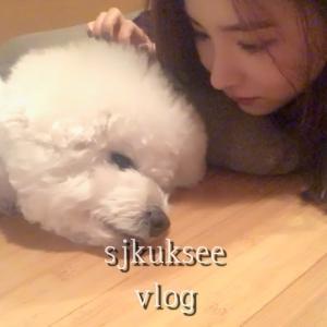 【映像】韓国女優『シン・セギョン』日常生活を公開!「ペット・料理など」