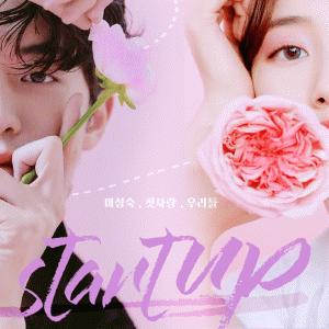 【韓国ドラマ】ペ・スジ &ナム・ジュヒョク主演『スタートアップ: 夢の扉』競争の激しいハイテク業界で起業を夢見る若者達!