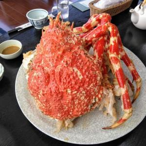 理想の蟹 タカアシガ二を楽にたらふく食べて夢をかなえるプラン