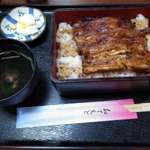 確かな味と技術のうなぎ屋さん 御食事処スズキ 新横浜の隠れた名店