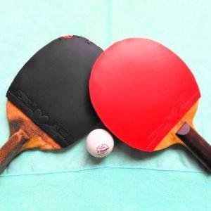 何か運動を始めたいなら卓球がオススメ