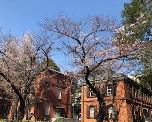 江東中医薬学院4月は休講します