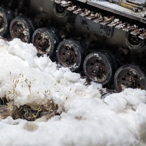 〈ジオラマ〉雪のレニングラード(4)植物や雪