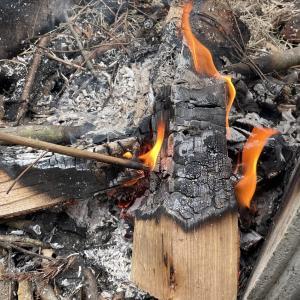 久々に焚火~ベーグルをただただ焼く姿がエモイ
