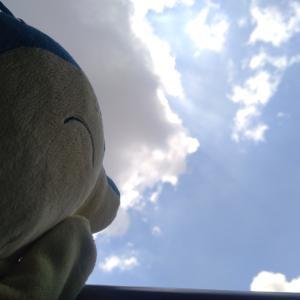 【8/1】ヒノアラシのブログ5ヶ月継続成果・今月の目標