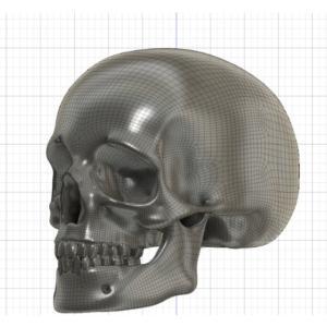3DCADでスカルリング作ってみる