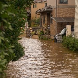 災害弱者目線で2つ厳選!氾濫した道を安全に避難するために必要なものは何か