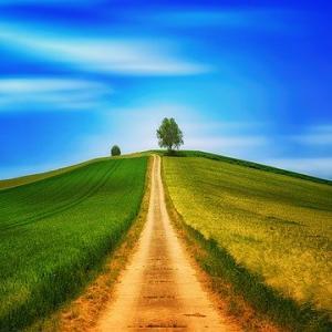 """冥王星と【山羊座22度】""""道の途中~あなたの「歩み」は全部無駄じゃない""""~リブログ"""