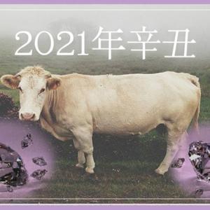 2021年立春*干支【辛丑】が表すエネルギーの流れからみる「今年の過ごし方」