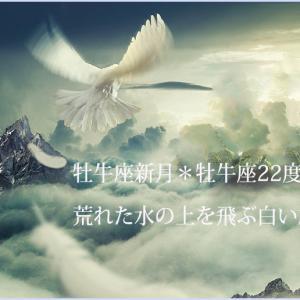 牡牛座新月サビアン*牡牛座22度*荒れる感情に呑まれず飛ぶ白い鳩のごとく
