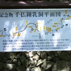 千仏鍾乳洞を探検